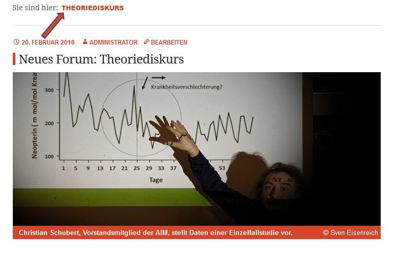 Neue Kategorie: Theoriediskurs.
